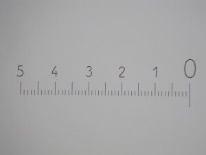 Escala micrométrica utilizada para calibrar a escala no ImageJ.
