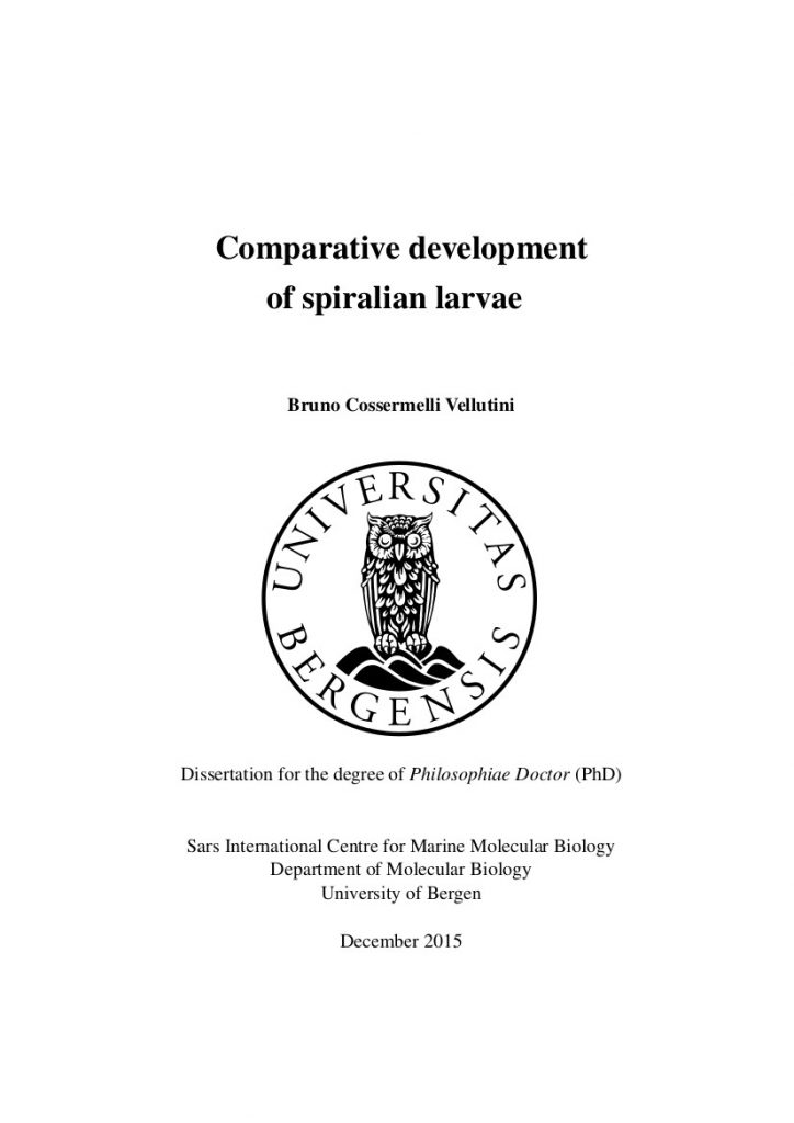 Bruno C. Vellutini PhD Thesis