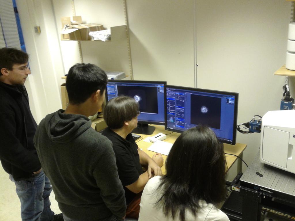 Lightsheet microscopy demo