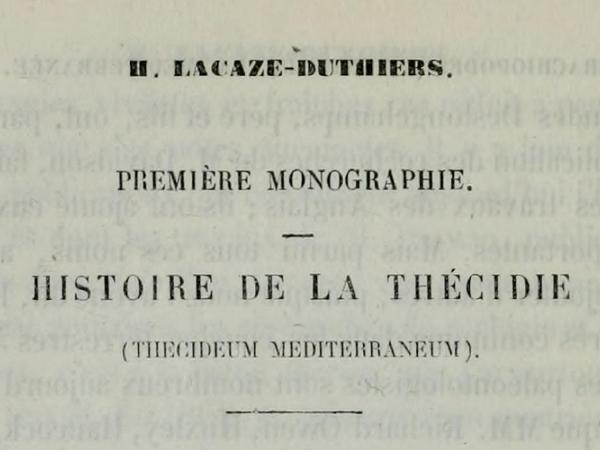 Histoire de la Thécidie